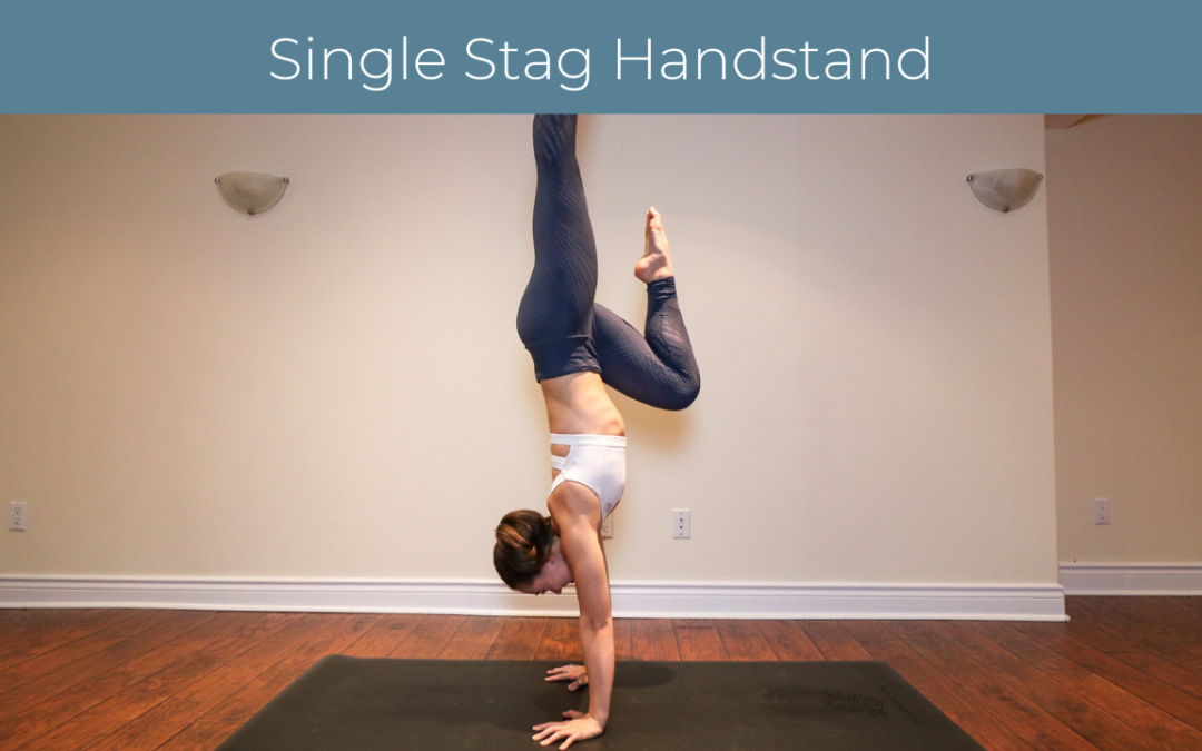 Single Stag Handstand