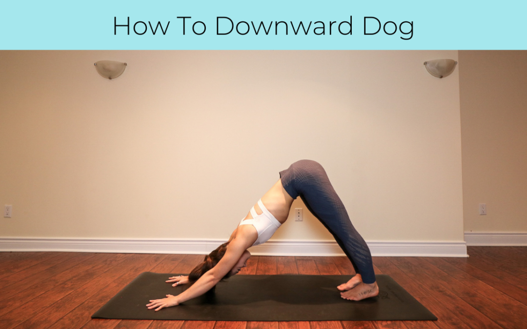 Tutorial: Downward Dog