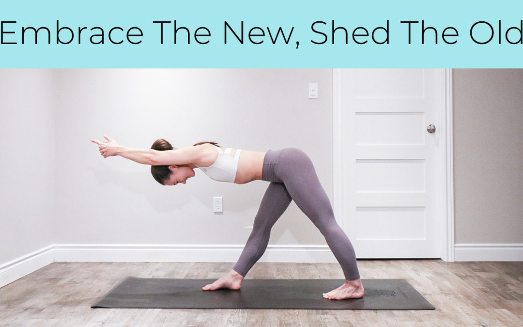 Embrace The New, Shed The Old